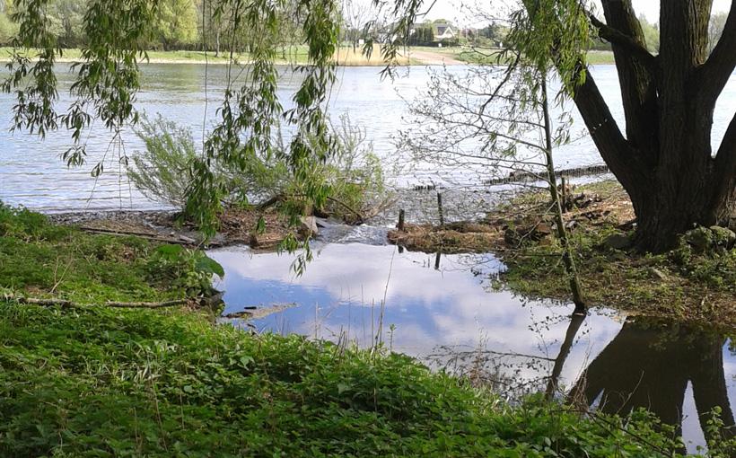 maasmonding-broekhuizermolenbeek-2