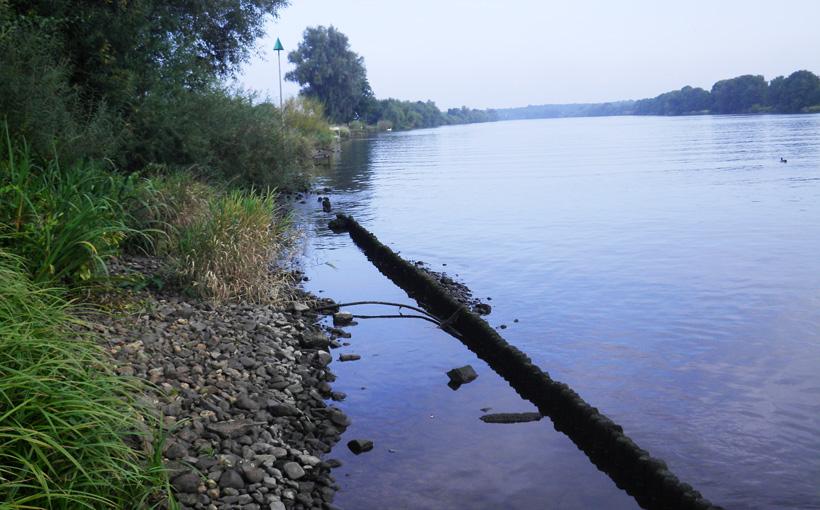 maasmonding-broekhuizermolenbeek-3